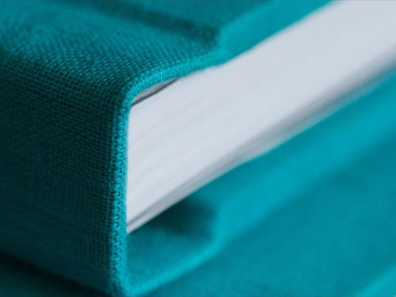 PictoBooks Fabrik cover